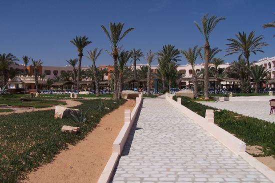 Safira Palms Hotel & Spa: Vu de la Plage