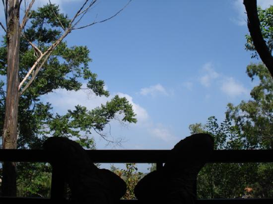 Club Mahindra Madikeri, Coorg: Feet up in the balcony - bliss!