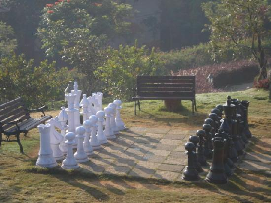 Club Mahindra Madikeri, Coorg: Outdoor chess!