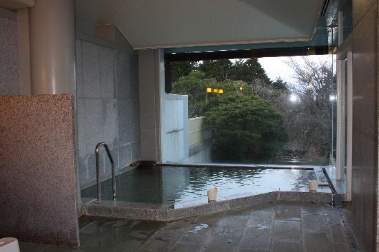 Hakone Yunohana Prince Hotel: women's onsen