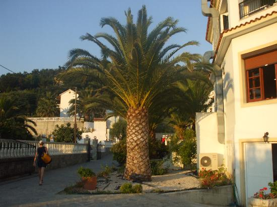 Agios Georgios, Grækenland: The courtyard of the Belle Helene hotel