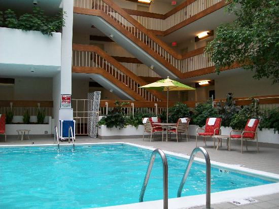Saddle Brook Marriott : Pool 2