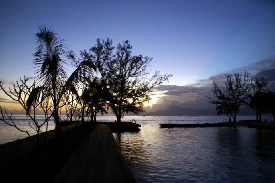 Manava Suite Resort Tahiti : 夕方の落ち着く景色です。