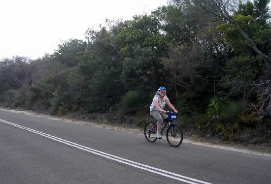 Manly Bike Tours and Bike Hire: Cycling to North Head