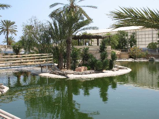 Hasdrubal Thalassa & Spa Djerba: djerba explorer parc aux crocodiles
