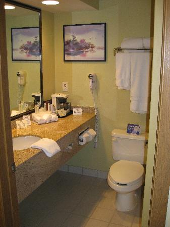 Holiday Inn Express Bemidji: A view into the bathroom.