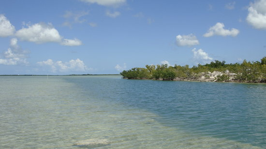 Cayo Hueso (Key West), FL: Super Secret Park 5
