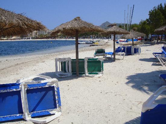 Botel Alcudiamar Hotel : private beach