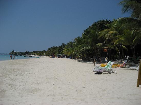 Bananarama Beach and Dive Resort: Beach