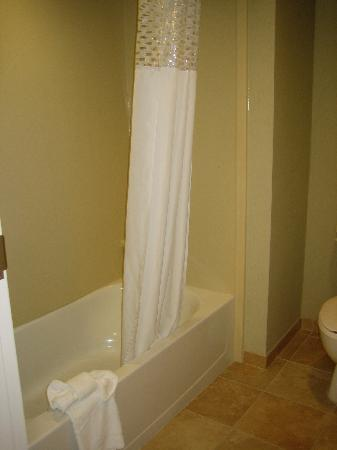 Hampton Inn & Suites Alexandria Old Town Area South : Shower