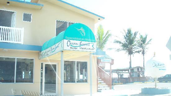 Ocean Front Hotel & Restaurant : The Ocean Front