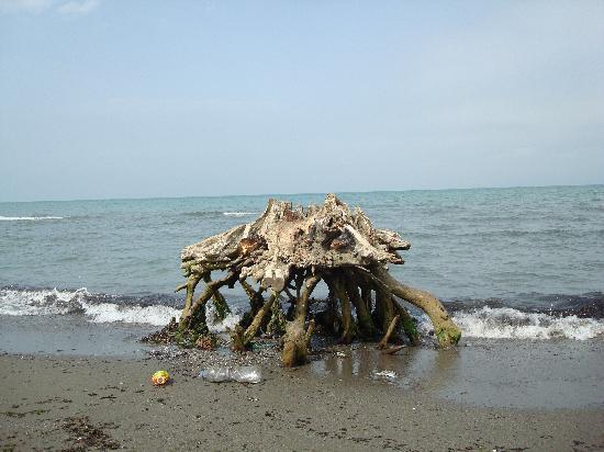 Talesh, Iran: gisoom beach
