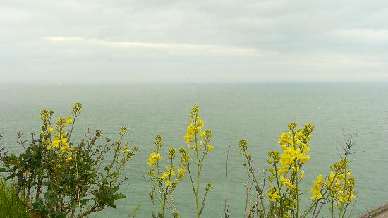 Number One B&B: View from Dover Cliff