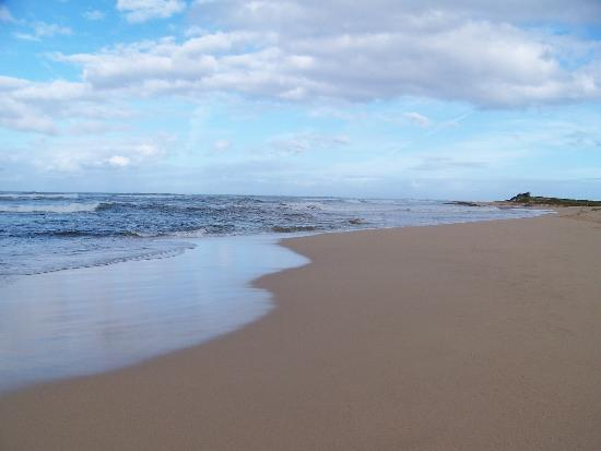 barking navy on getaways vacation rv l cottages cabins rentals sands beach more kauai sites photos propertys