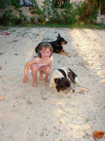 Arorangi Beach Front Bungalow & Studio Unit : Sarah with Lucky and Patch