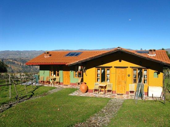 Lazy Dog Inn: the 2 cabins