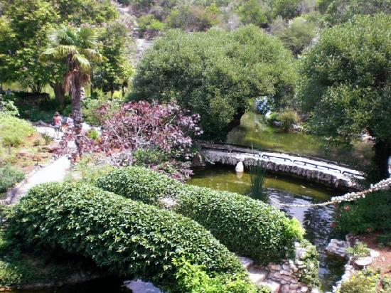 Another view from the pavilion picture of japanese tea gardens san antonio tripadvisor for Japanese botanical garden san antonio