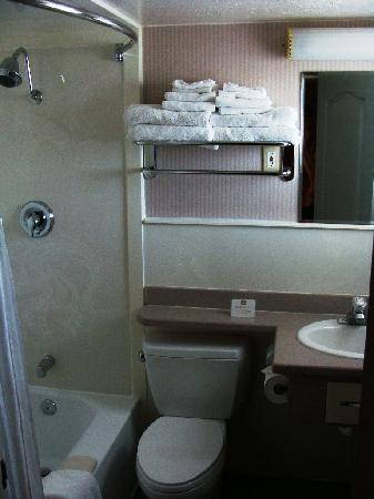 BEST WESTERN Travel Inn: Bathroom