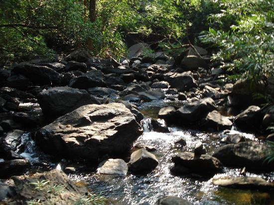 South Goa District, Ινδία: Vom Bergsee abfließender Bach