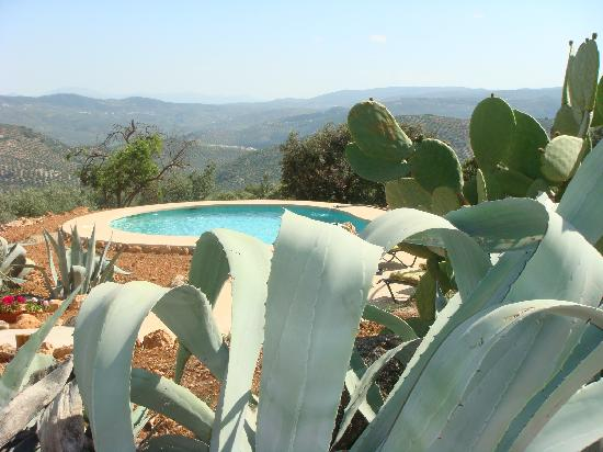 Brazos Abiertos Casa Rural: Swimming Pool and Amazing View