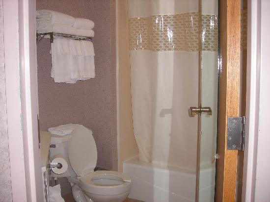 Hampton Inn Syracuse North (Airport Area): The Bathroom