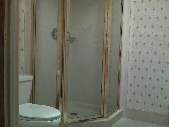 ‪راديسون هوتل أونتاريو إيربورت: Shower and toilet in separate room‬