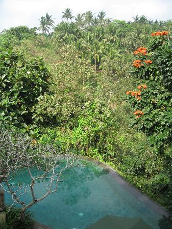 Natura Resort and Spa : Vue depuis restaurant