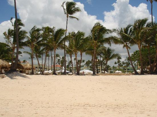 Iberostar Grand Hotel Bavaro : view from beach captured everyones attention