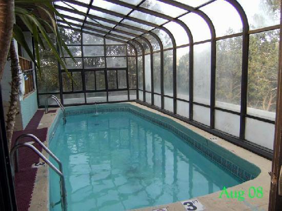 Swiss Chalet Hotel: Pool
