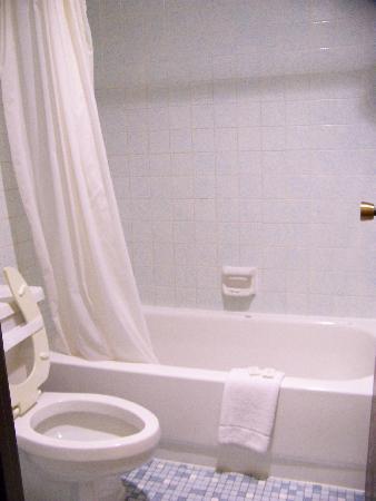 Grand Inn Fargo: The actual bathroom