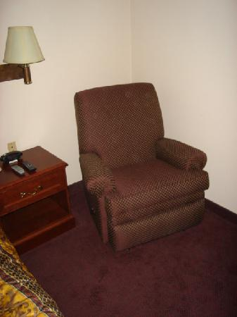 Greenwood Suites Anaheim Resort: Comfy Recliner