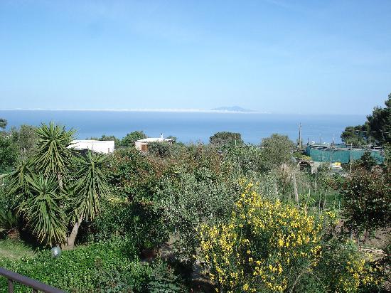 Villa Damecuta: vue de la terrasse