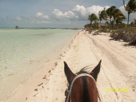 Loved it! - Gran Caribe Club Villa Cojimar Pictures ... Horseback Riding On The Beach Photography