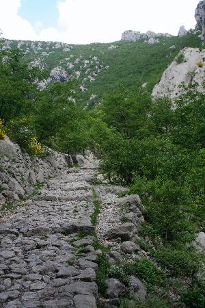Paklenica National Park: rocky trail