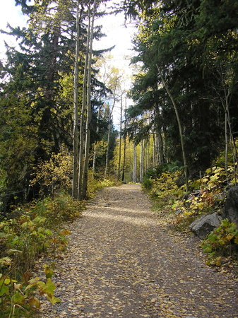 Beaver Lake Trail
