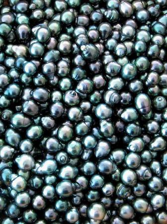 Club Bali Hai Moorea Hotel : A bowl of black pearls