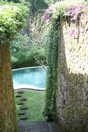 Villa di Abing: Steps down to pool