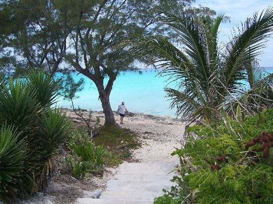 Bimini Ocean Villas: Path to beach