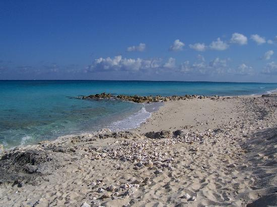 Bimini Ocean Villas: Our beach again....beautiful