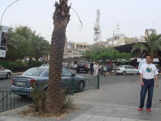 Ali Baba Restaurant : 全景