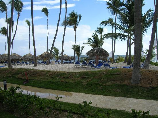Dreams Palm Beach Punta Cana: Beach View