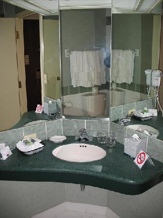 Residence Inn Ottawa Downtown: Salle de bain