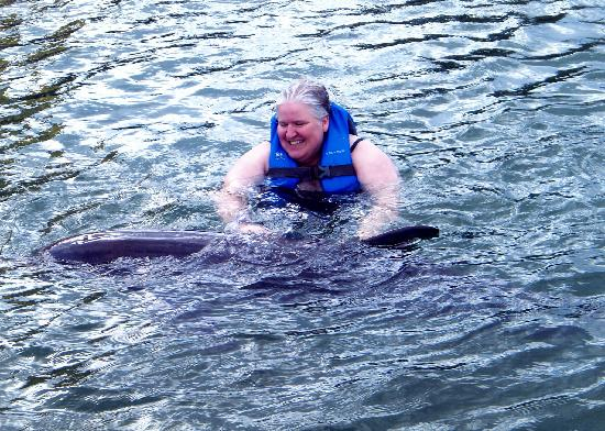 Dolphin Cove Cayman: Petting the dolphin