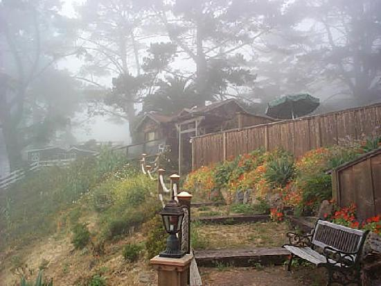 Gorda Springs Resort: un-retouched digital photo of the Palm House in morning Big Sur fog