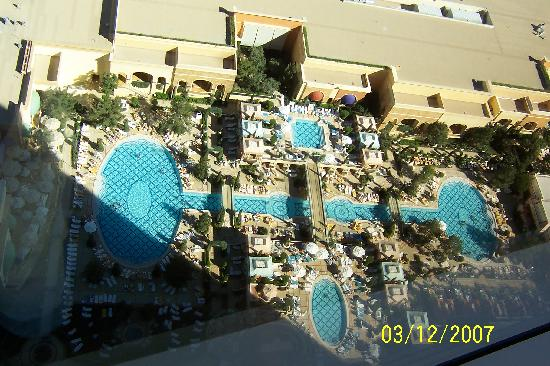 Wynn pools picture of wynn las vegas las vegas for Nspi pool show vegas