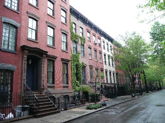 Jones Street Guesthouse: Neighbourhood