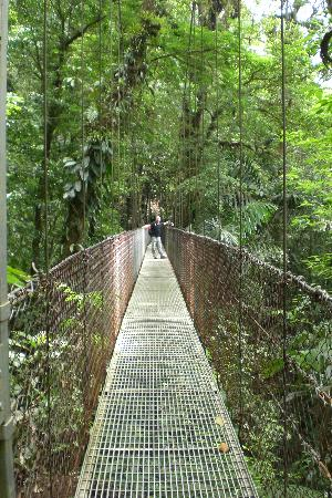 Nayara Resort Spa & Gardens: Arenal hanging bridges