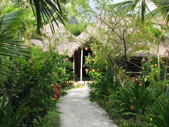 Jungle Beach VietNam: One of the bungalow