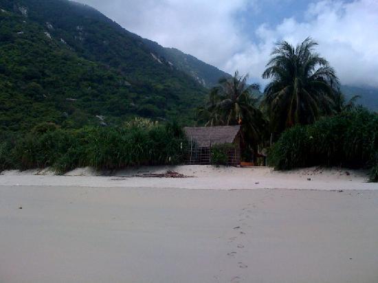 Jungle Beach VietNam: Jungle Beach from the beach