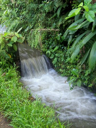 Ubud, Indonezja: irrigation channel